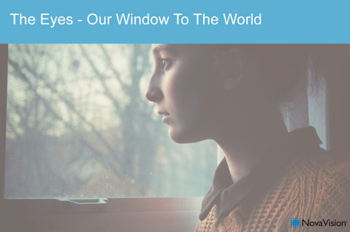 The Eyes – Our Window To The World