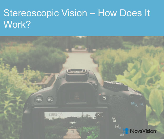 Stereoscopic Vision – How Does It Work?