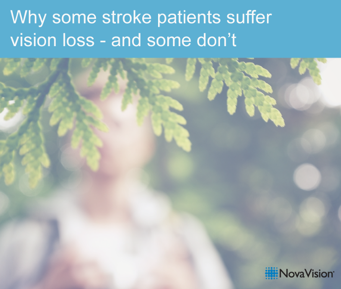 Why Some Stroke Patients Suffer Vision Loss – And Some Don't